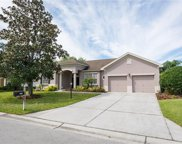 3007 Forest Hammock Drive, Plant City image