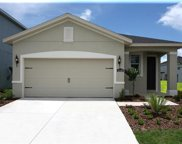 17377 Bracken Fern Lane, Clermont image