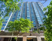 720 W Gordon Terrace Unit #20L, Chicago image