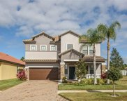 11908 Frost Aster Drive, Riverview image
