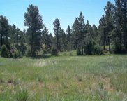 TBD Hombre Trail, Custer image