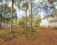 4905 Buck Bluff Dr., North Myrtle Beach image