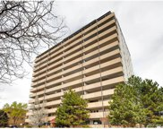 1029 East 8th Avenue Unit 107, Denver image