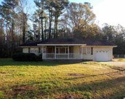 375 Bear Grass Rd. E, Longs image