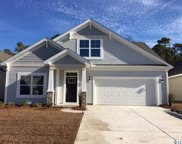 3718 White Wing Circle, Myrtle Beach image