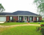 48861 Fawns Run Rd, Bay Minette image