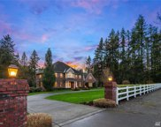 15313 168th Ave NE, Woodinville image