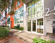 1025 Island Ave Unit #312, Downtown image