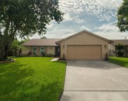 10308 Out Island Drive, Tampa image