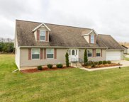 59384 County Line Road, Three Rivers image