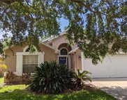 7107 Colony Pointe Drive, Riverview image