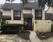 8 Peter Horry Ct. Unit 192, Georgetown image