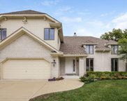 457 Birchwood Court, Willowbrook image
