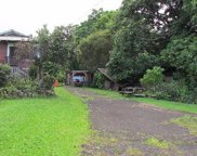 36-2387 PUUALAEA HOMESTEAD RD, Big Island image