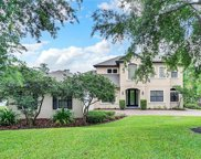 11203 Preston Cove Road, Clermont image