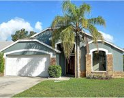 1249 Woodfield Oaks Drive, Apopka image