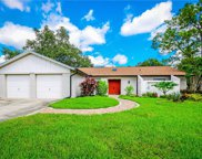 6732 Maybole Place, Temple Terrace image