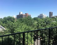 1433 North Williams Street Unit 703, Denver image