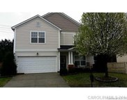 10633 Mountain Springs  Drive, Charlotte image