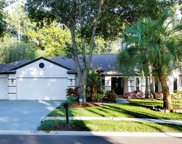 4740 Brayton Terrace S, Palm Harbor image