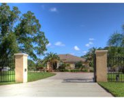12529 Twin Branch Acres Road, Tampa image
