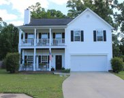 105 Kerry Gibbons Drive, Chapin image