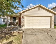 1100 Shadow Creek Blvd, Buda image