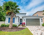 17802 Woodland View Drive, Lutz image