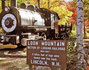 90 Loon Mountain Road Unit #1310 D, Lincoln image