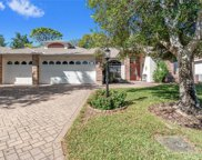 3007 Misty Meadow Court, Spring Hill image