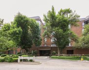 1140 Old Mill Road Unit 203F, Hinsdale image