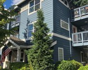 1652 NE 25th Place Unit 204, Issaquah image