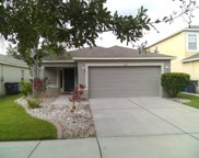 7925 Carriage Pointe Drive, Gibsonton image