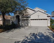 11423 Crisfield Place, New Port Richey image