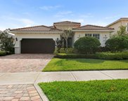 213 Andros Harbour Place, Jupiter image