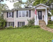 807 Forest Dr, Homewood image