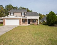 46 Easter Lilly Court, Murrells Inlet image