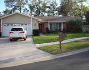110 Timberview Drive, Safety Harbor image