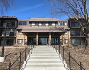 205 Barry Avenue S Unit #111, Wayzata image