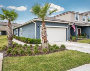 3165 CHESTNUT RIDGE WAY, Orange Park image