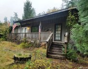 144 Mountain View Dr, Packwood image