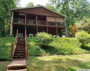 575 Tanglewood Lane, Scottsboro image