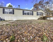125 Greenland Rd, Luttrell image