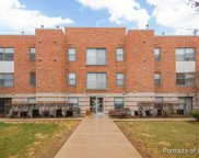 3255 Kirchoff Road Unit 213, Rolling Meadows image