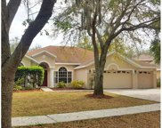 15205 Merlinpark Place, Lithia image