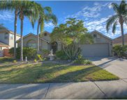 14921 Redcliff Drive, Tampa image