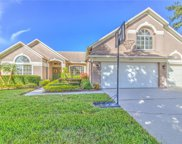 4640 River Overlook Drive, Valrico image