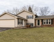 1375 Coral Reef Way, Lake Zurich image