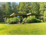 10105 Rolley Crescent, Maple Ridge image