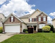 15106  Callow Forest Drive, Charlotte image